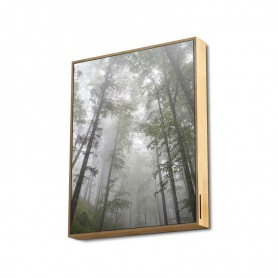 ALTAVOCES ENERGY BLUETOOH FRAME SPEAKER FOREST 5.0 50W 2.1 TRUE WIRELESS 447534