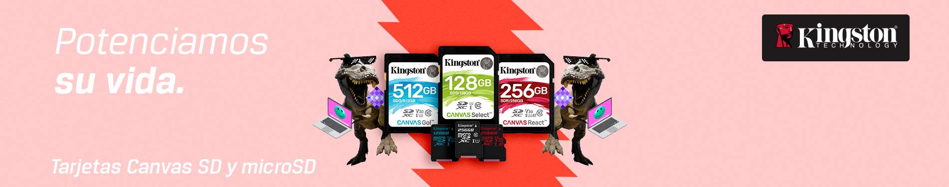 Kingston Micro SD Canvas